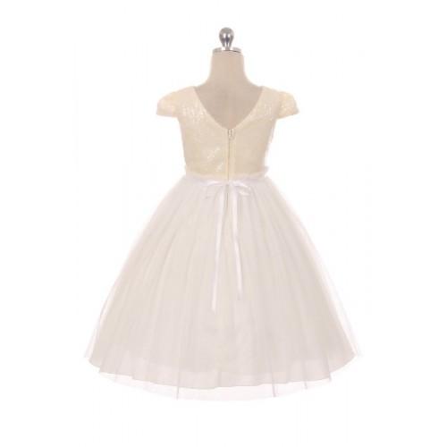 Sequin Mesh Pleated Dress